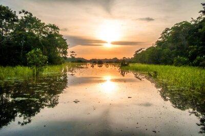 Fototapete Fluss im Amazonas Regenwald in der Dämmerung, Peru, Südamerika