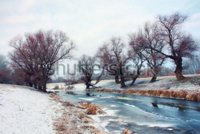 Fototapete Fluss im Winter