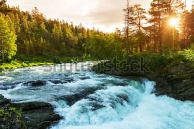 Fototapete Fluss in Norwegen