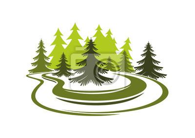 Forest Glade mit Fichten auf grünem Gras Wiese