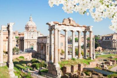 Fototapete Forum - Römische Ruinen in Rom, Italien