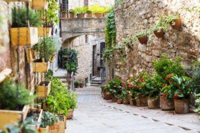 Fototapete Fotografie mit Orton-Effekt einer Straße mit Pflanzen und Blumen in der historischen italienischen Stadt Spello (Umbrien, Italien)