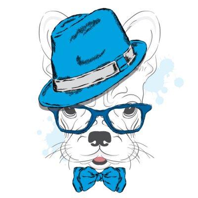 Fototapete Französisch Bulldog Vektor. Cartoon Welpen. Ein Hund in einem Hut und Sonnenbrille. Süßer Welpe. Hipster. Junge. Rassehund.