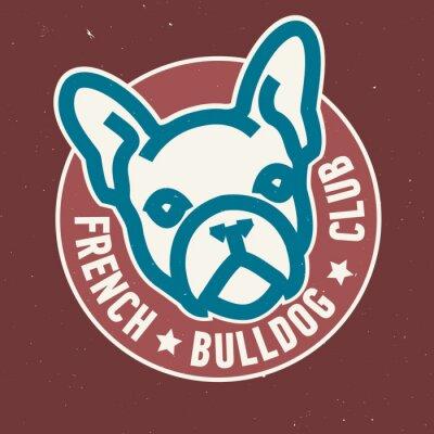 Französischer Bulldoggen-Verein-Kreis-Emblem-Entwurf. Abbildung.