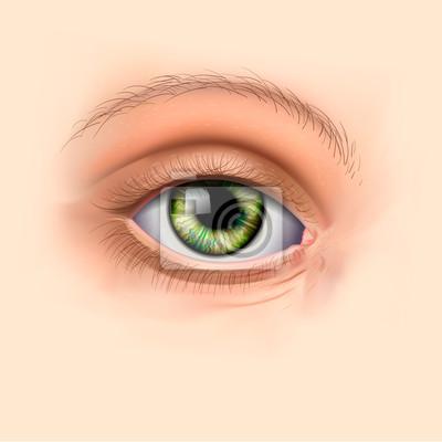 Frau grüne Augen schließen, Vektor-Illustration eps10.