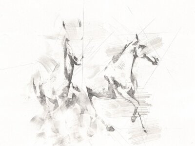 Fototapete freehand horse head pencil drawing