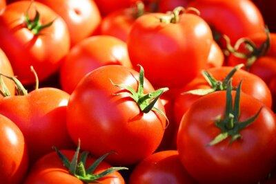 Fototapete Fresh organic tomatoes on the street stall