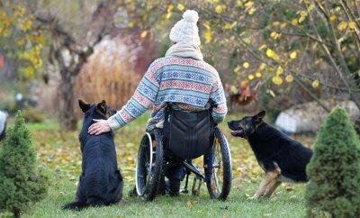 Fototapete Freundschaft - Hunde und Rollstuhlfahrer