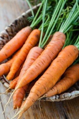 Fototapete Frische Karotten Bund