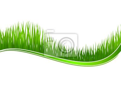 Frisches Gras Hintergrund