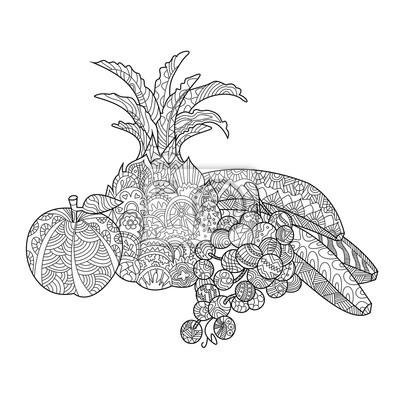 Früchte Ausmalbilder für Erwachsene Vektor