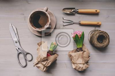 Fruhjahr Garten Vorbereitungen Hyacinth Blumen Und Vintage Tools