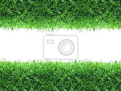 Frühling, grüne Gras Hintergrund