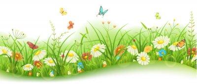 Fototapete Frühling oder Sommer floral Banner mit grünem Gras, Blumen und Schmetterlinge