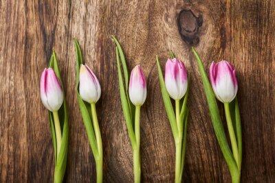 Fototapete Fünf rosa Tulpen auf hölzernen Hintergrund