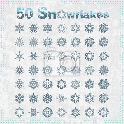 Fünfzig Schneeflocken