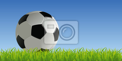 Fussball Fuss Ballon De Fuss Ballon Gelande Fond
