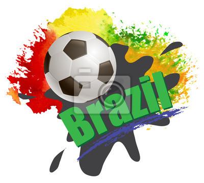 Fußball-Weltmeisterschaft Brasilien 2014 Hintergrund