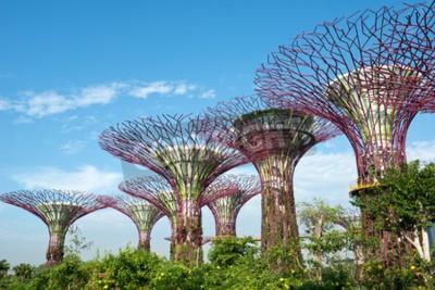 Fototapete Gärten von der Bucht, Singapur