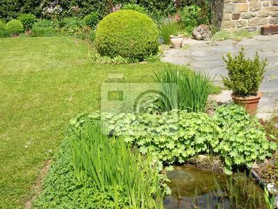 Gartenteich mit frauenmantel und terrasse mit buchsbaum im garten ...