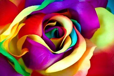 Fototapete gefälschte Rose Blume