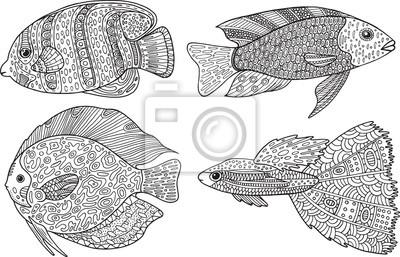Fototapete Gekritzel Zentangle Fische Zen Kunst Malvorlagen Für Erwachsene