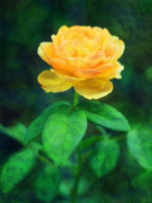Gelbe Rose / Ölgemälde-Fotoeffekt