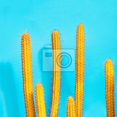 Fototapete Gelber Kaktus Fashion Set. Kunstgalerie Design. Süßer Sommer  Style. Minimal Fashion Stillife