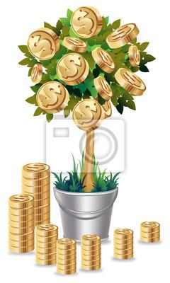 Geldbaum in der Silber-Blumentopf auf weißem Hintergrund