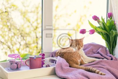 Gemutliches Zuhause Konzept Lila Frische Tulpen In Glasvase