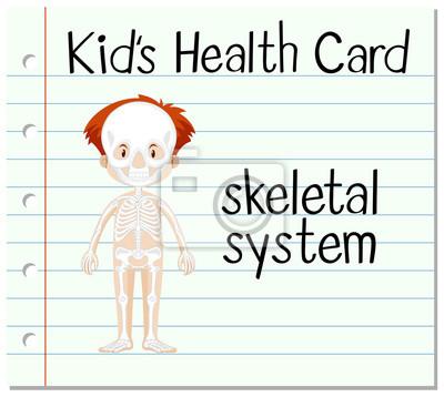 Gesundheit karte mit skelett-system fototapete • fototapeten dass ...
