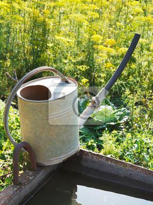 Gießkanne Auf Becken Mit Wasser Für Den Garten Fototapete