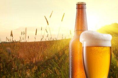Fototapete Glas Bier und Flasche gegen Weizen-Feld und Sonnenuntergang