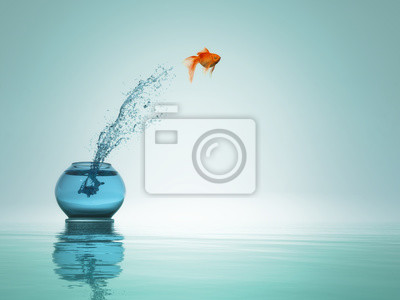 Fototapete Goldfish jump to the sea