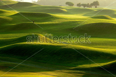 Fototapete golf place with nice green