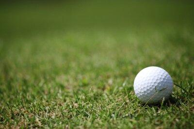 Fototapete Golfball im Gras