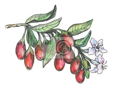 Erfreut Schwarzweiß Blumen Entwurf Fotos - Kleider und Blumen ...