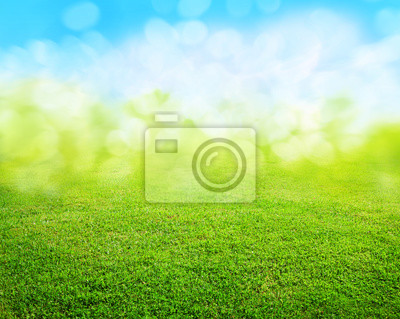 Fototapete Gras Hintergrund