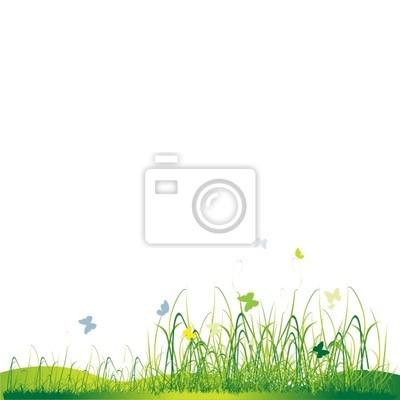 Grass Silhouette grün, Sommer Hintergrund