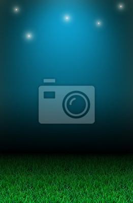 Fototapete Grass und die Sterne.