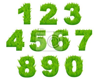 Grass Zahlen und Ziffern