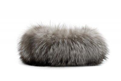 Fototapete Gray animal fur isolated on white background
