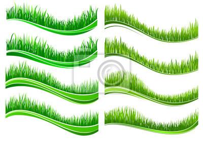 Green colored grass borders