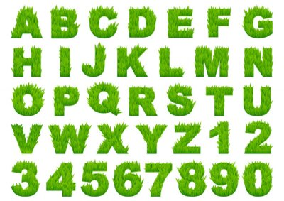 Fototapete Green grass alphabet with letters and numbers