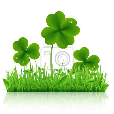 Green Grass mit Klee