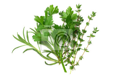 Fototapete green thyme bunch isolated on white background. top view