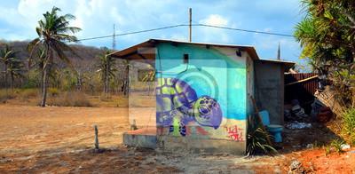 Green Turtle Graffiti auf einer Insel in Indonesien.