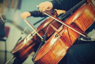 Fototapete Großes Orchester auf der Bühne, die Hände spielt Cello