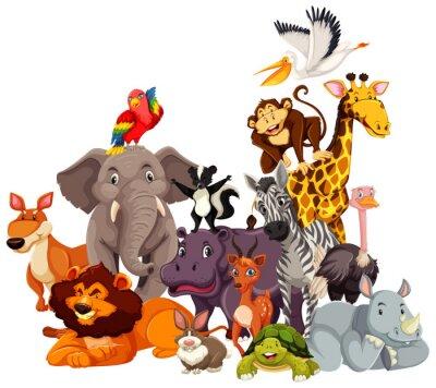 Group of wild animals cartoon character