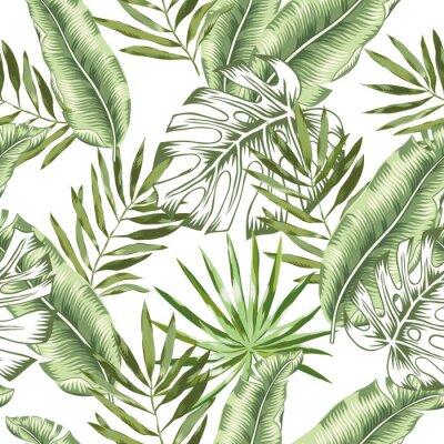 Fototapete Grüne Banane, Monstera-Palmblätter mit weißem Hintergrund. Vektor nahtlose Muster. Tropische Dschungel Laub Abbildung. Exotische Pflanzen grün. Blumendesign des Sommerstrandes. Paradiesische Natur.